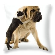 Boston Terrier And Mastiff Throw Pillow