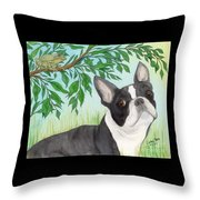 Boston Terrier Dog Tree Frog Cathy Peek Art Throw Pillow