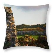 Botallack Fox At Sunset Throw Pillow