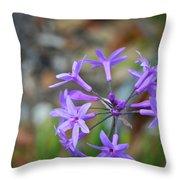Botanical Art Print - Tiny Dancers By Sharon Cummings Throw Pillow