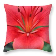 Botanical Beauty 2 Throw Pillow