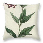 Botanical Engraving Throw Pillow