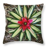 Botanical Flower Throw Pillow
