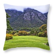 Botanical Garden Throw Pillow