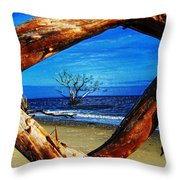 Charleston Sc Botany Bay Throw Pillow by Ella Char