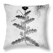 Botany: Opium Poppy Throw Pillow