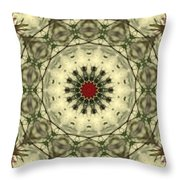 Bottle Brush Kaleidoscope Throw Pillow