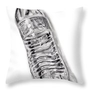 Bottled Water Throw Pillow by Dale Jackson