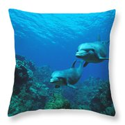 Bottlenose Dolphins Over Reef Throw Pillow