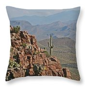 Bottom Of The Sierra Ancha Forest Throw Pillow