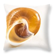 Bottoms Up Throw Pillow by Jean Noren