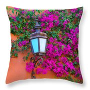 Bougainvillea And Lamp, Mexico Throw Pillow