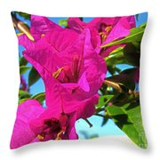 Bougainvillea Beauty Throw Pillow