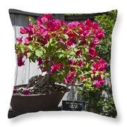 Bougainvillea Bonsai Tree Throw Pillow