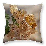 Bougainvillea Flowers  Throw Pillow