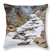Boulder Creek Frosted Snowy Portrait View Throw Pillow
