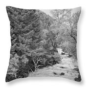 Boulder Creek Winter Wonderland Black And White Throw Pillow
