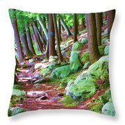 Boulder Forest Throw Pillow