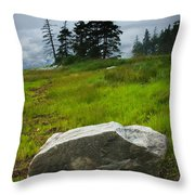 Boulder On The Shore At The Mount Desert Narrows In Maine Throw Pillow