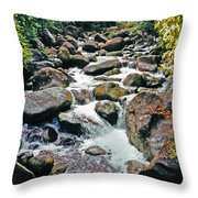 Boulder Stream Throw Pillow
