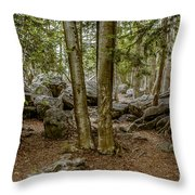 Boulder Woods Throw Pillow