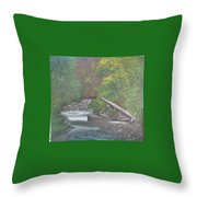 Boundary Creek  Bc Throw Pillow