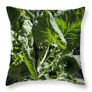 Bountiful Brussel Sprouts Throw Pillow