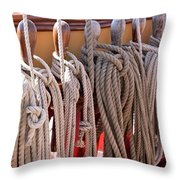 Bounty Lines Throw Pillow