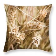 Bounty Of Nature And Labour - Featured 3 Throw Pillow