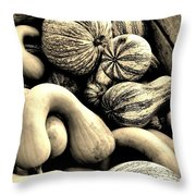 Bounty Throw Pillow