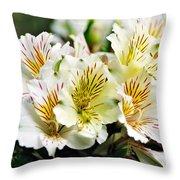Bouquet Of Alstroemeria Throw Pillow