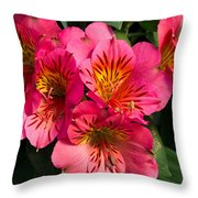 Bouquet Of Pink Lily Flowers Throw Pillow