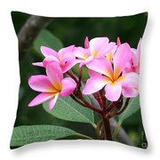 Bouquet Of Pink Plumeria Throw Pillow