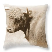 Bovine With Bangs Throw Pillow