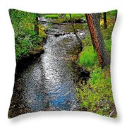 Bow River Near Lake Louise Campground In Banff National Park-ab Throw Pillow