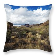 Bowen Homestead Ruins Throw Pillow
