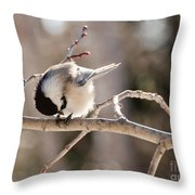Bowing Throw Pillow
