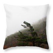 Bowing To Pressure Throw Pillow
