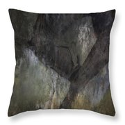 Bowing To The Earth Throw Pillow