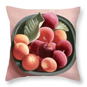 Bowl Of Fruit Throw Pillow by Tomar Levine