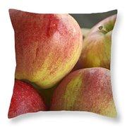 Bowl Of Royal Gala Apples Throw Pillow