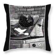 Boxed Chicken Throw Pillow