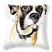 Boxer Dog Poster Throw Pillow