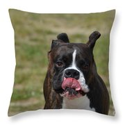Boxer Licking His Chops Throw Pillow