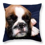 Boxer Puppy Sleeping Throw Pillow by Weston Westmoreland