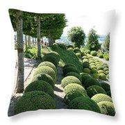 Boxwood Garden Globes Throw Pillow