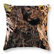 Boykin Spaniel Portrait Throw Pillow