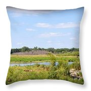 Boylan Marsh Throw Pillow