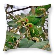 Brace Of Chiriqui Conures Throw Pillow