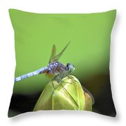 Bracing For The Wind Throw Pillow